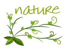 Nature background - green ecology vector Royalty Free Stock Photo