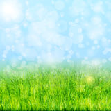 Nature background with green grass and blue sky vector.  stock illustration