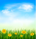 Nature background with green grass and flowers and. Blue sky. Vector Stock Photo