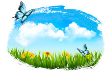 Nature background with green grass, flowers. And a butterfly. Vector royalty free illustration