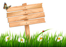 Nature background with green grass and flowers and wooden sign Royalty Free Stock Photo