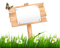 Nature background with green grass and flowers and. Wooden sign Vector Royalty Free Stock Photography