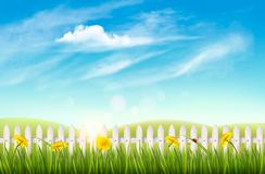 Nature background with green grass and french. Vector Royalty Free Stock Photo