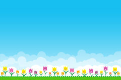 Nature background with green grass and smile flowers and blue sk Royalty Free Stock Photos
