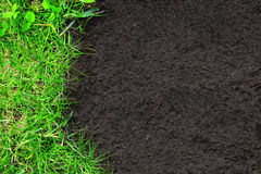 Nature background with green grass and soil Royalty Free Stock Image