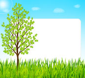 Nature background with green grass, tree and blue sky Stock Photography