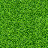 Nature background with green grass. Vector illustration Stock Illustration