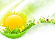 Nature Background, horizontal Stock Photography