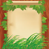 Nature background with leaves, grass and paper Stock Photos