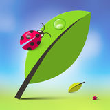 Nature Background with Leaves and Ladybugs. Spring Abstract Vector Illustration stock illustration