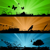 Nature background with lighting Stock Photography