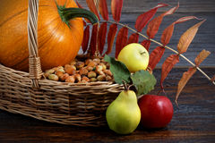 Nature background made of autumn fruit Royalty Free Stock Photo