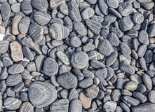 Nature background made of dry round stones Stock Photography
