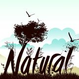 Nature background with nautre graphic  Stock Photography
