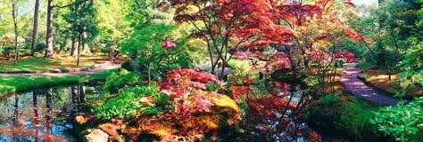 Nature background panorama Stock Photo