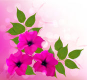 Nature background with pink beautiful flowers. Vec Stock Images