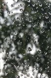 Nature background through rain drops on clear glass surface Stock Photos
