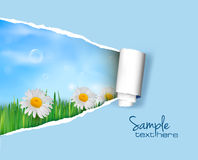 Nature background with ripped paper. Vector illustration vector illustration