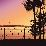 Nature background with river and tree. Birds sitting on railing, Colorful sunset. Stock Images