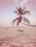 Nature background of sea with coconut palm tree in vintage style Royalty Free Stock Image