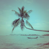 Nature background of sea with coconut palm tree in vintage style Stock Photos
