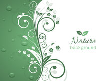 Nature  background with spiral swirly pattern and water drops. Stock Images