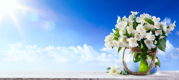 Nature  background with spring flowers a  blue sky background Stock Photos
