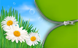 Nature background with spring flowers and zipper. Nature background with spring flowers and open zipper. Vector illustration Royalty Free Stock Photo