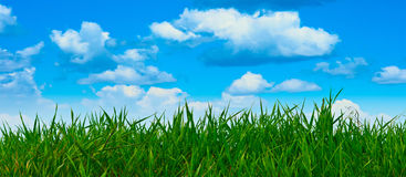 Nature background in summer day stock images