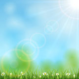 Nature background with sun Royalty Free Stock Photography