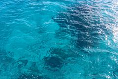 Nature background of transparent sea water Royalty Free Stock Photo