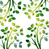 Nature background with tree branches and green leaves. Green silhouette of tree branches with leaves drawing in watercolor, hand drawn artistic illustration Stock Illustration