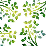 Nature background with tree branches and green leaves. Green silhouette of tree branches with leaves drawing in watercolor, hand drawn artistic illustration Royalty Free Illustration