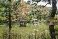 Nature background with view of traditional Japanese garden in Hibiya public park in Tokyo. Japan, with pond, trees, and water reflections in November royalty free stock photography
