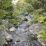 Nature background with view of traditional Japanese garden in Kanazawa, Japan. With rocks and artificial waterfall in November stock images