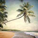 Nature-. Nature background in vintage style Stock Photography