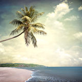 Nature. Background in vintage style Royalty Free Stock Photos