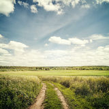 Nature. Background in vintage style Royalty Free Stock Photography