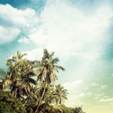 Nature. Background in vintage style Stock Photos