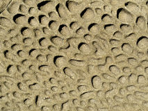 Nature background of weathered sandstone surface Stock Photo