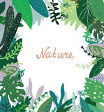 Nature background with wild plants Stock Photo