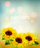 Nature background with yellow sunflowers. Royalty Free Stock Photography