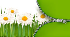 Nature background with zipper. Vector. Illustration Royalty Free Stock Images