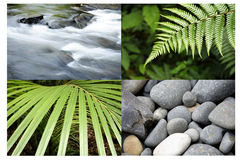 Nature backgrounds Royalty Free Stock Image