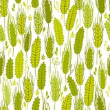 Spike cereals seamless pattern Stock Image