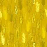 Spike cereals seamless pattern Royalty Free Stock Photography