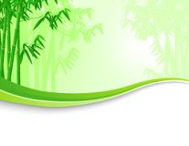 Nature bamboo background Stock Photography