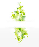 Nature banner background Royalty Free Stock Photography
