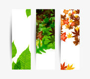 Nature banner Royalty Free Stock Photo