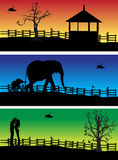 Nature banners, animals Stock Images